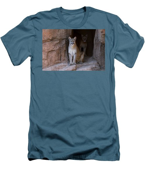 Men's T-Shirt (Slim Fit) featuring the photograph Mountain Lion 1 by Arterra Picture Library