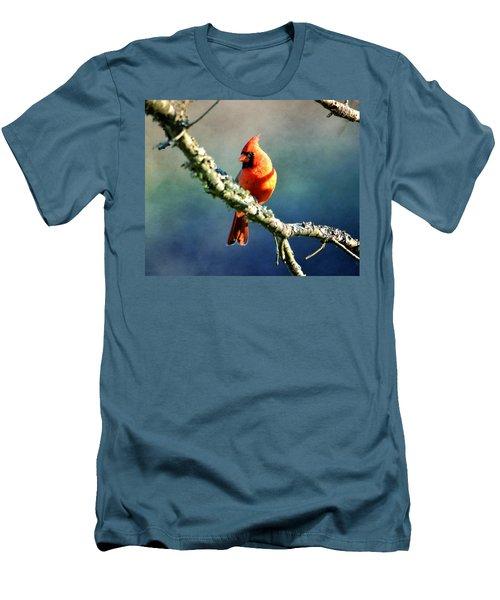 Northern Cardinal Men's T-Shirt (Slim Fit) by Deena Stoddard