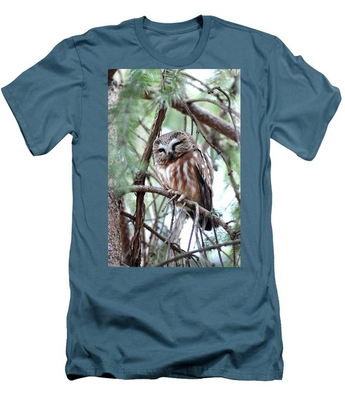 Northern Saw-whet Owl 2 Men's T-Shirt (Athletic Fit)