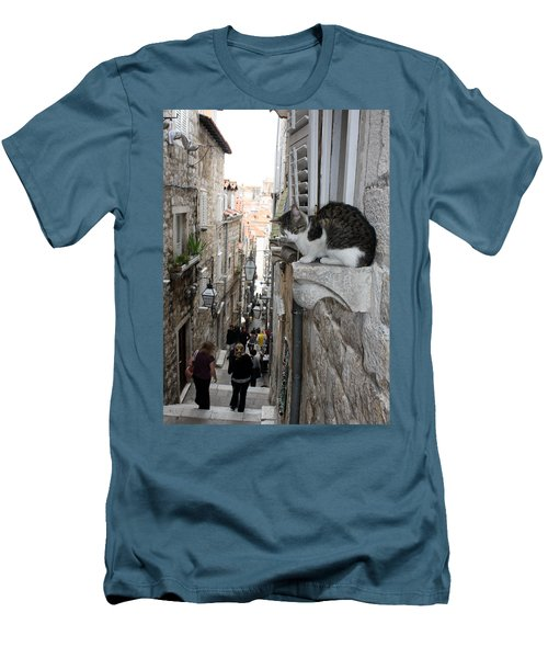 Old Town Alley Cat Men's T-Shirt (Slim Fit) by David Nicholls