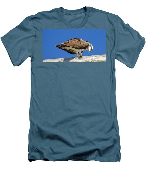 Men's T-Shirt (Slim Fit) featuring the photograph Osprey Eating Lunch by Dale Powell