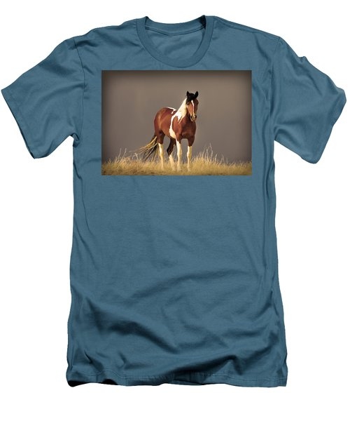 Paint Filly Wild Mustang Sepia Sky Men's T-Shirt (Athletic Fit)