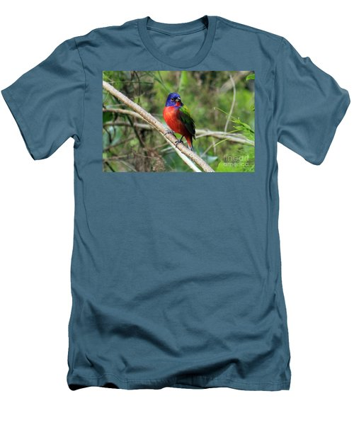 Men's T-Shirt (Slim Fit) featuring the photograph Painted Bunting Photo by Meg Rousher