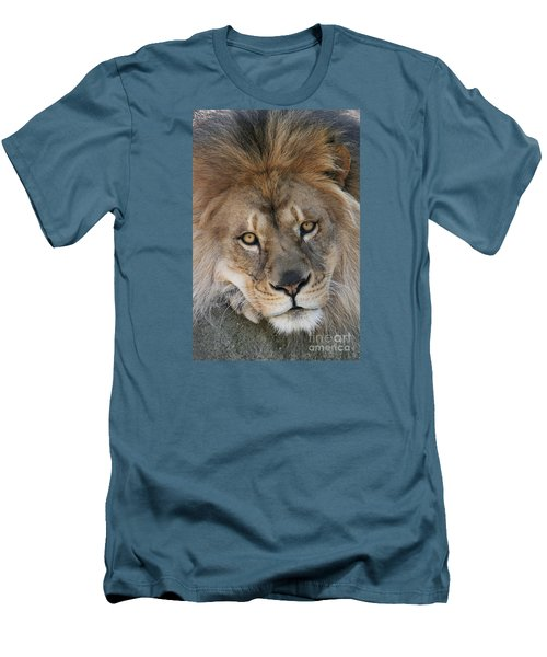 Pet Me Men's T-Shirt (Slim Fit) by Judy Whitton