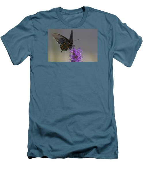 Pipevine Alights Men's T-Shirt (Slim Fit) by Shelly Gunderson