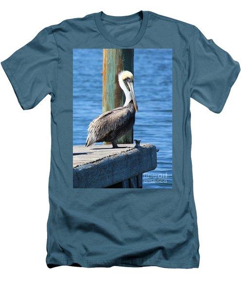 Posing Pelican Men's T-Shirt (Athletic Fit)