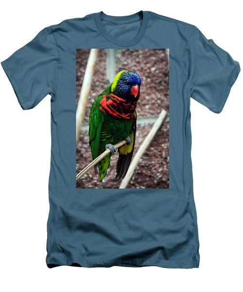 Men's T-Shirt (Slim Fit) featuring the photograph Rainbow Lory Too by Sennie Pierson