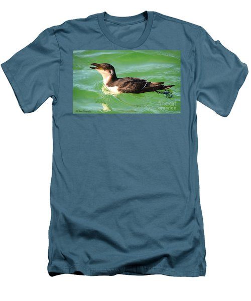 Razorbill In Florida Men's T-Shirt (Athletic Fit)