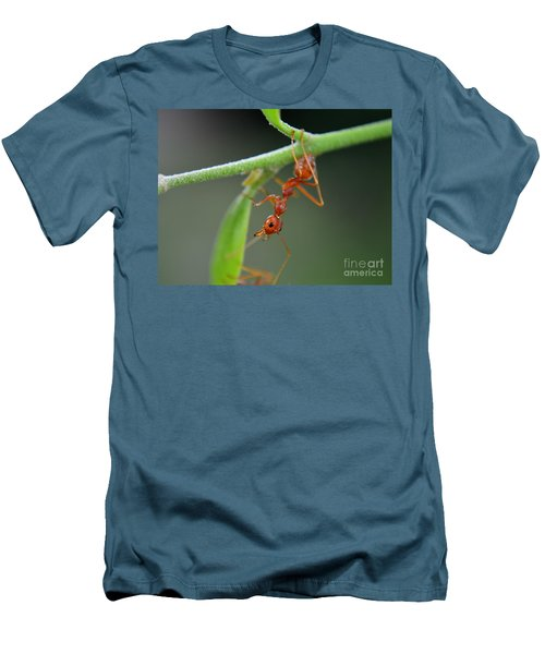Red Ant Men's T-Shirt (Athletic Fit)