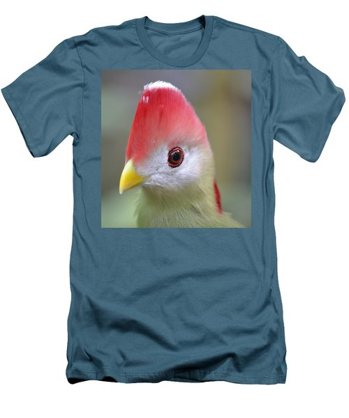 Red Crested Turaco Men's T-Shirt (Athletic Fit)