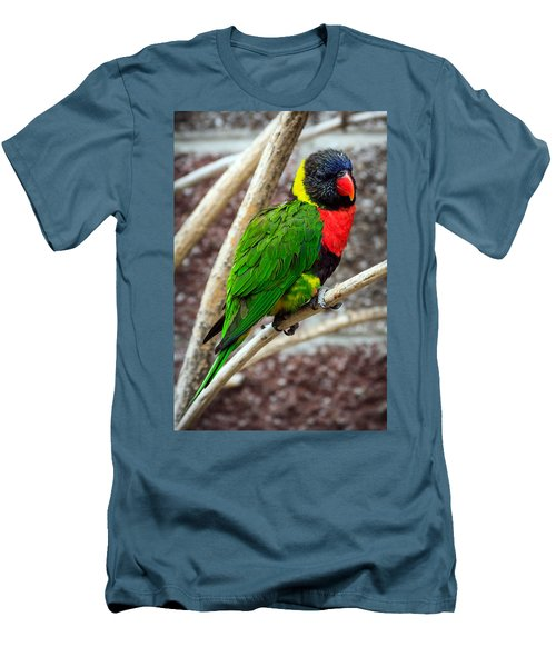 Men's T-Shirt (Slim Fit) featuring the photograph Resting Lory by Sennie Pierson