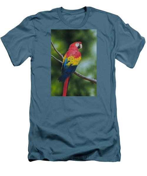Scarlet Macaw Men's T-Shirt (Athletic Fit)