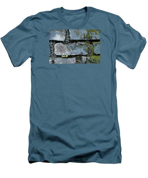 Skc 0301 Tiny Twin Leaves Men's T-Shirt (Slim Fit) by Sunil Kapadia