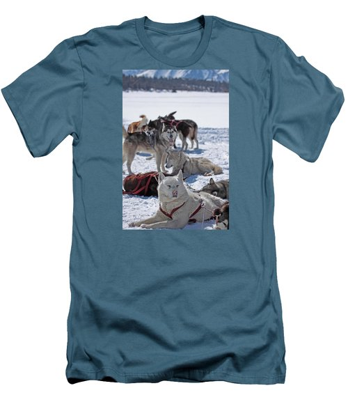 Sled Dogs Men's T-Shirt (Slim Fit) by Duncan Selby