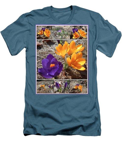 Spring Time Crocuses Men's T-Shirt (Athletic Fit)