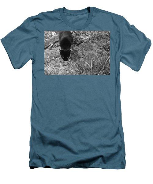 Stalking Cat Men's T-Shirt (Slim Fit) by Melinda Fawver