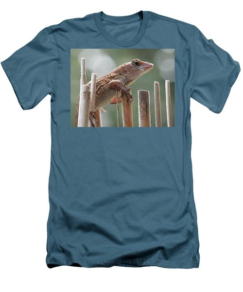 Sunning Lizard Men's T-Shirt (Athletic Fit)