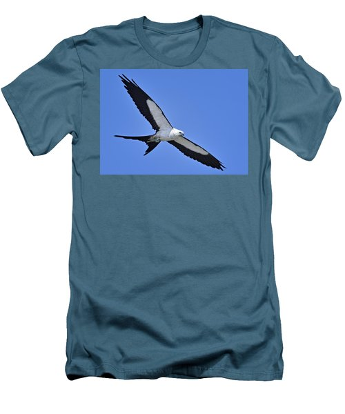 Swallow-tailed Kite Men's T-Shirt (Athletic Fit)