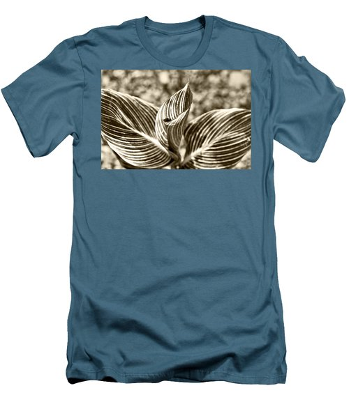 Swirls And Stripes Men's T-Shirt (Athletic Fit)