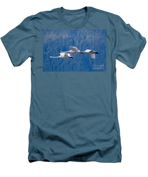 Three Swans Flying Men's T-Shirt (Athletic Fit)