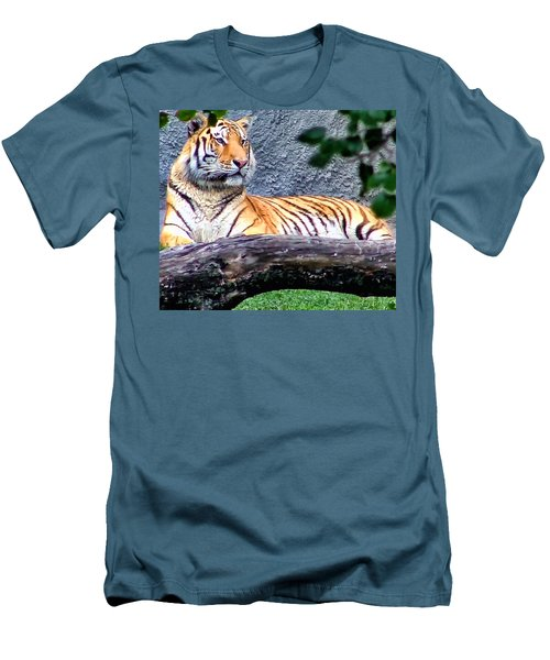 Men's T-Shirt (Slim Fit) featuring the photograph Tiger 1 by Dawn Eshelman