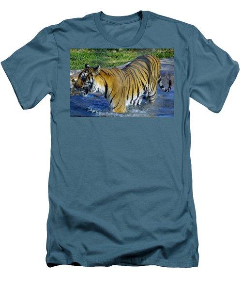 Tiger 4 Men's T-Shirt (Athletic Fit)