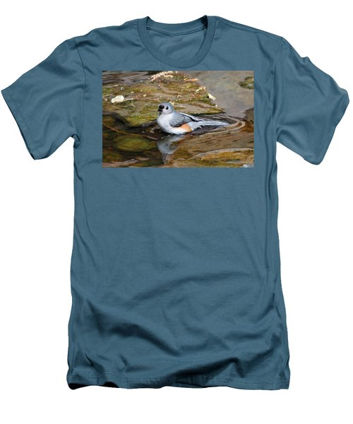 Tufted Titmouse In Pond Men's T-Shirt (Slim Fit) by Sandy Keeton
