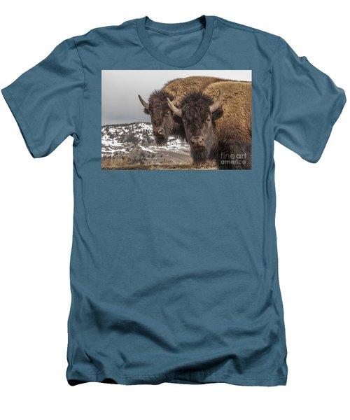Two Bison Men's T-Shirt (Athletic Fit)