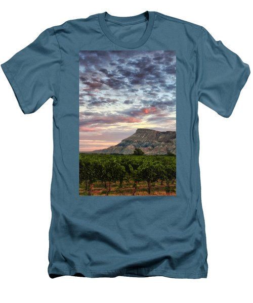 Vineyards And Mt Garfield Men's T-Shirt (Athletic Fit)