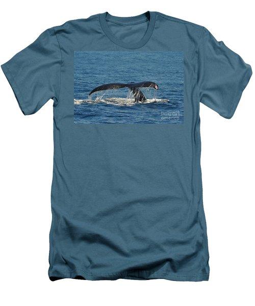 Whale Tail Men's T-Shirt (Slim Fit) by Randi Grace Nilsberg