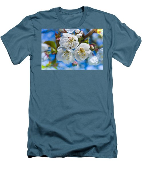 White Cherry Blossoms Blooming In The Springtime Men's T-Shirt (Athletic Fit)