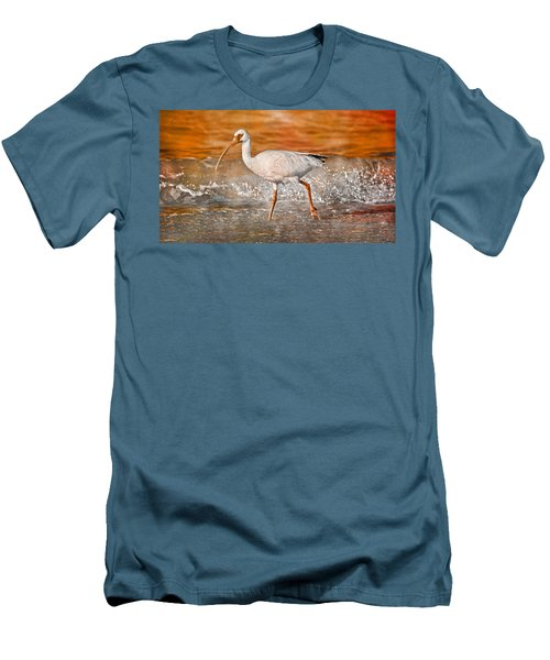 White Ibis Stroll Men's T-Shirt (Athletic Fit)