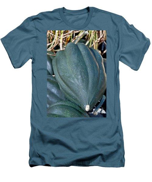 Whole Acorn Squash Art Prints Men's T-Shirt (Slim Fit) by Valerie Garner