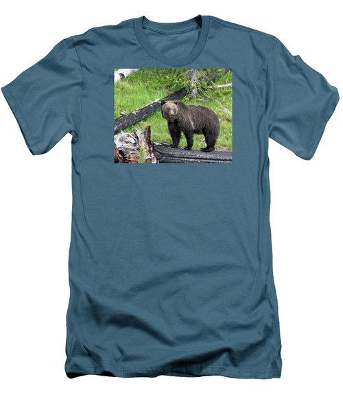 Yellowstone Grizzlies 2 Men's T-Shirt (Athletic Fit)