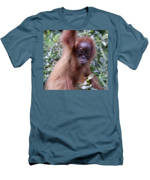 Men's T-Shirt (Slim Fit) featuring the pyrography Young Orangutan Kiss by Shoal Hollingsworth