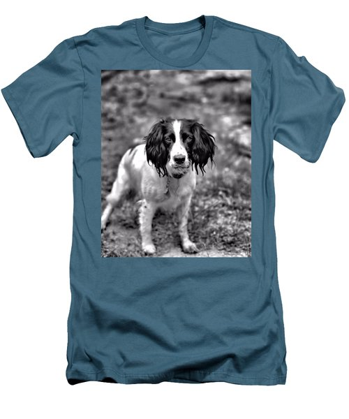 Springer Spaniel Men's T-Shirt (Slim Fit) by Marlo Horne