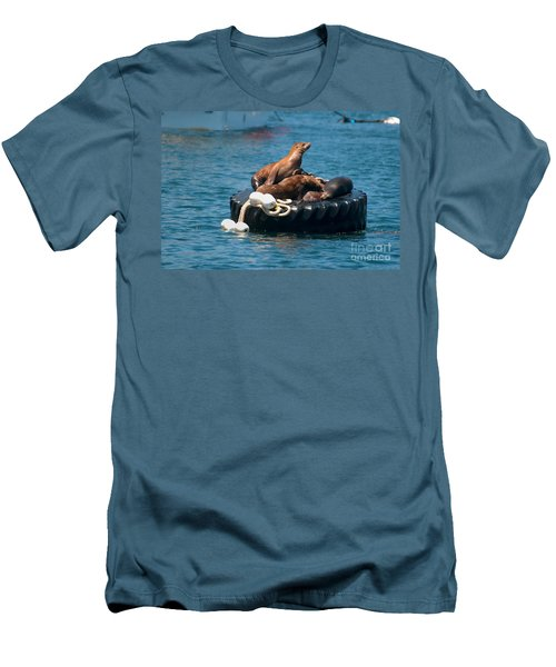 Monterey Harbour Men's T-Shirt (Slim Fit) by Carol Ailles