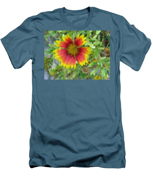 Men's T-Shirt (Slim Fit) featuring the photograph A Beautiful Blanket Flower by Ashish Agarwal