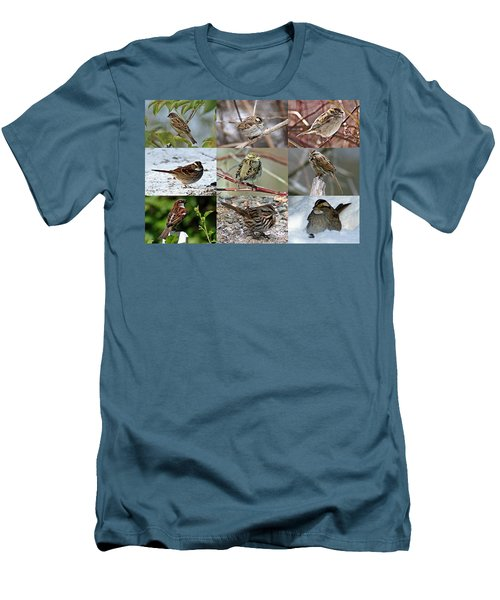 A Study In Sparrows Men's T-Shirt (Athletic Fit)