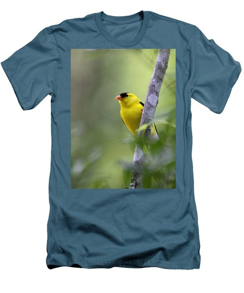 American Goldfinch - Peaceful Men's T-Shirt (Athletic Fit)