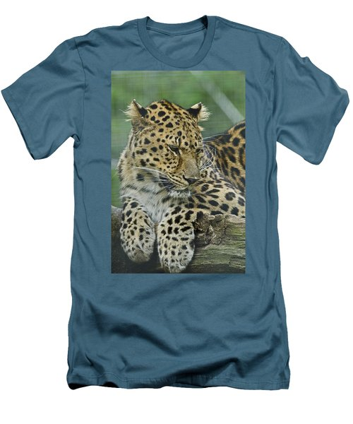 Amur Leopard Men's T-Shirt (Athletic Fit)