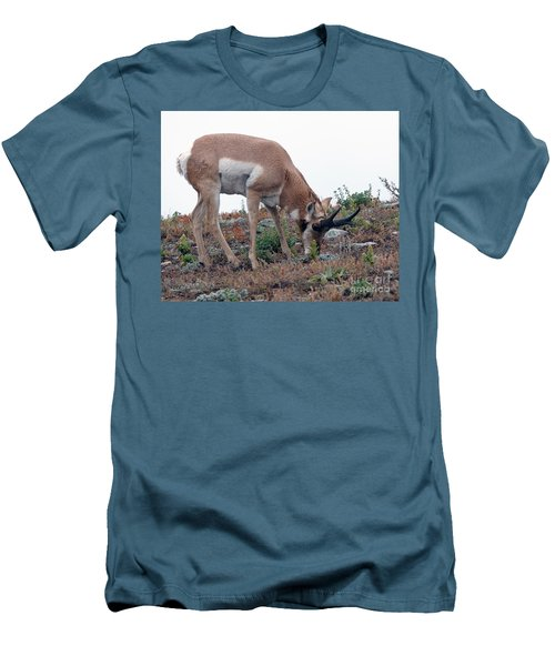 Men's T-Shirt (Slim Fit) featuring the photograph Antelope Grazing by Art Whitton