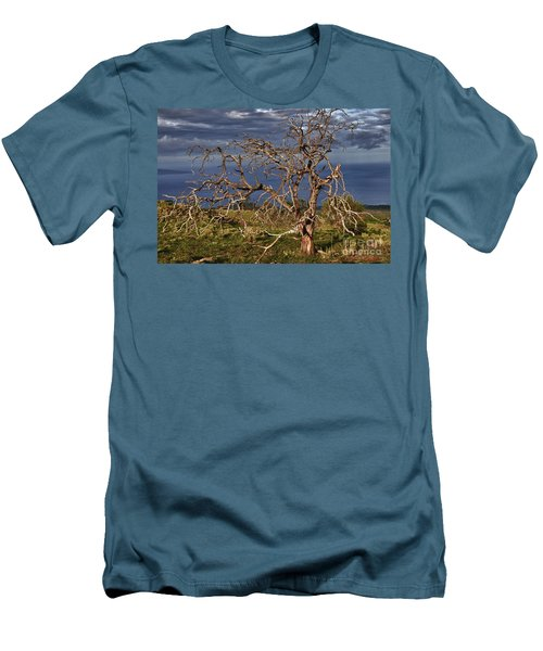 Bare Tree In Hana Maui Men's T-Shirt (Slim Fit)