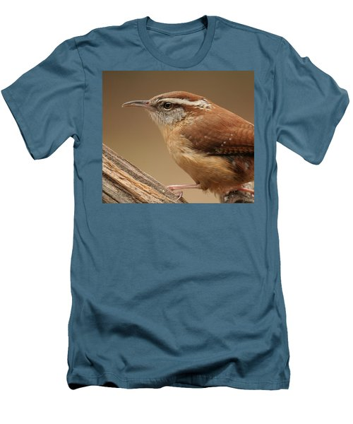 Carolina Wren Men's T-Shirt (Slim Fit) by Daniel Reed