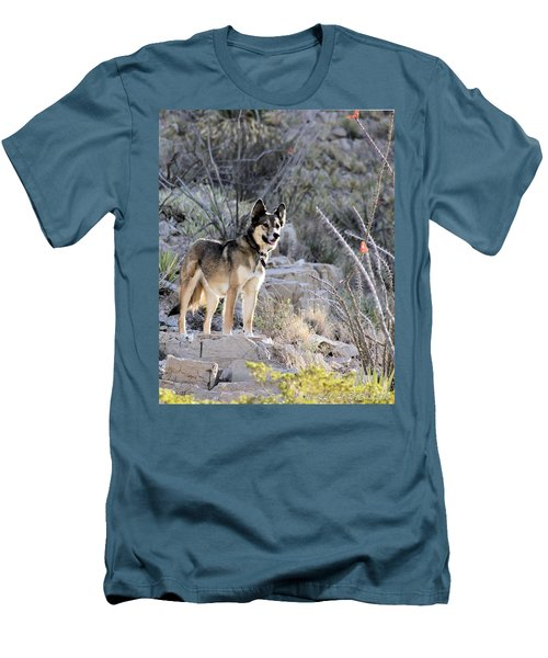 Dog In The Mountains Men's T-Shirt (Slim Fit) by Marlo Horne