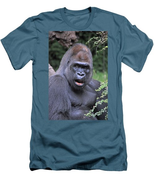 Gorilla Men's T-Shirt (Athletic Fit)