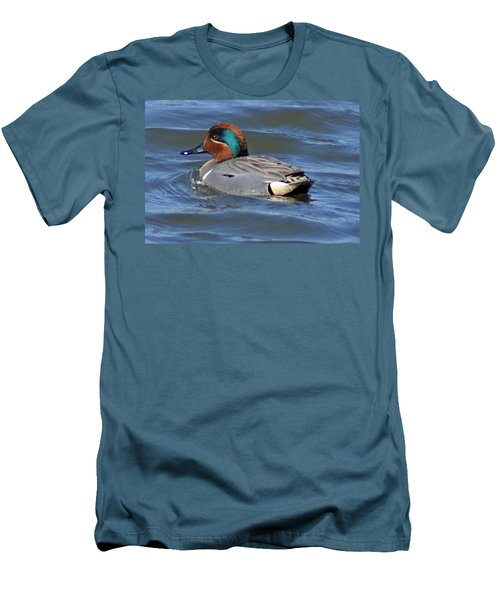 Green Winged Teal Men's T-Shirt (Athletic Fit)