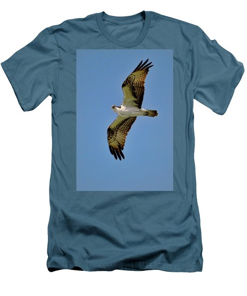 Osprey Above Men's T-Shirt (Athletic Fit)