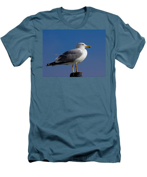 Men's T-Shirt (Slim Fit) featuring the photograph Seagull by David Gleeson