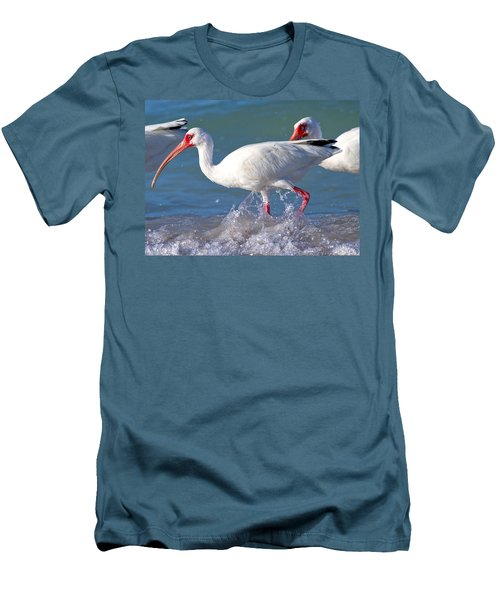 White Ibis On The Shore Men's T-Shirt (Athletic Fit)